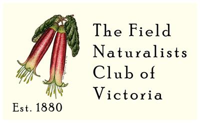 FNCV Logo