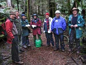 FNCV Fungi Group