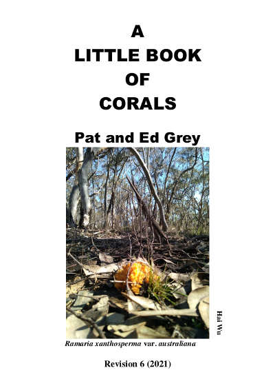A Little Book of Corals