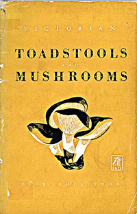 Toadstools (22K)